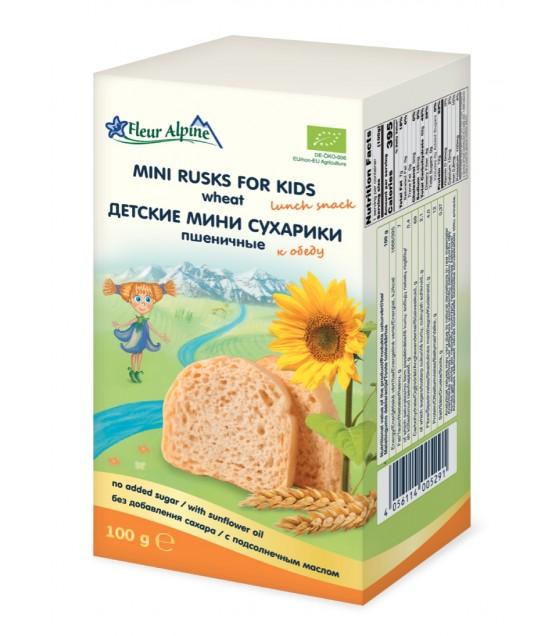 Fleur Alpine - Mini Wheat Rusks For Kids - 100g (exp. 04.12.20)